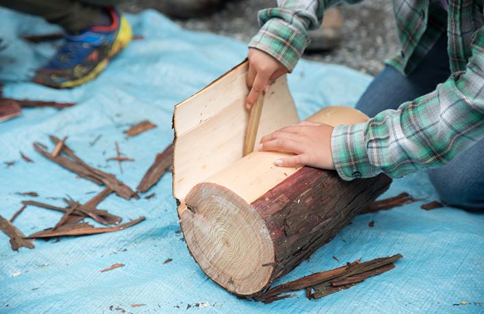 国産間伐材有効活用事業