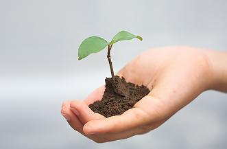 地球にやさしい環境運動推進事業