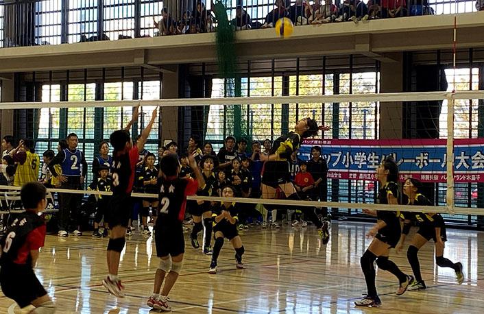 第13回 品川区小学生親子バレーボール大会の写真